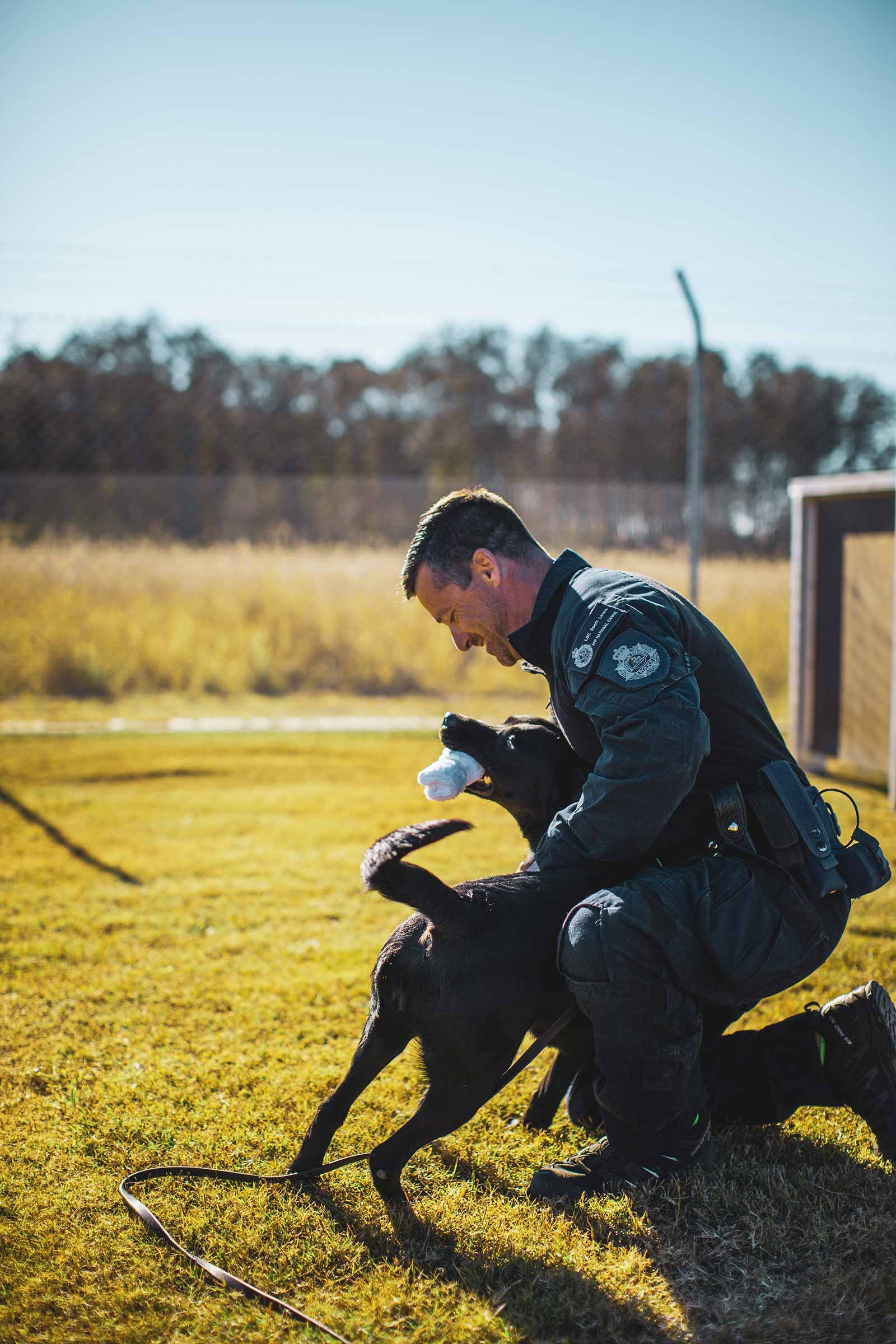 The AFP Canine Program training is based on repetition and reward