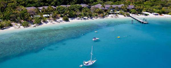Fitzroy Island Resort, Great Barrier Reef, Queensland | The trees helping to save the reef