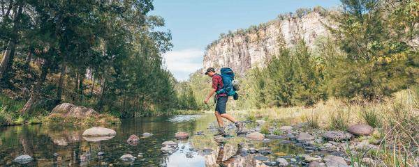 Walking Carnarvon Gorge | Roaming Roma: Four of the best day trips from Roma