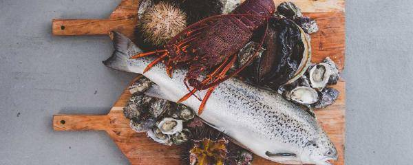 Seafood served fresh on a Tasmanian Wild Seafood Adventures tour | Seafood safari in Tasmania