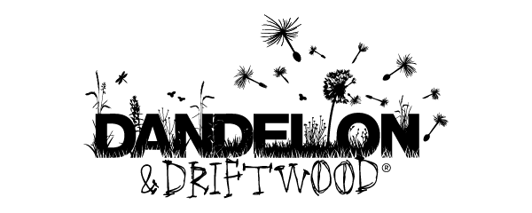 Dandelion and Driftwood